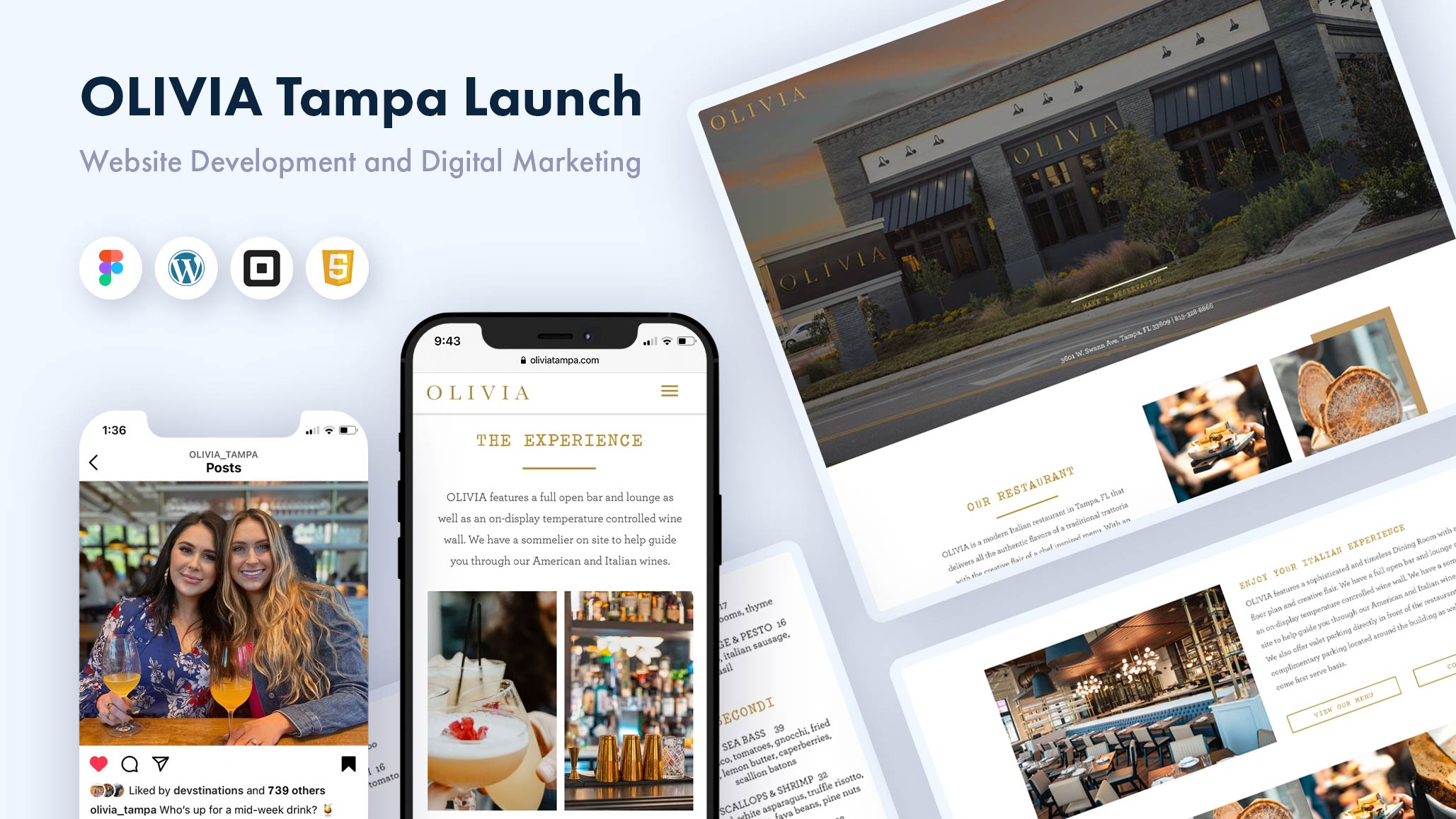 case-study-olivia-tampa-website-design-and-digital-marketing-sky-compass-media